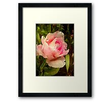 Soft as silk ©  Framed Print