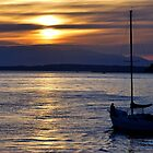 Sail Away Into the Sunset by Rachel Montiel