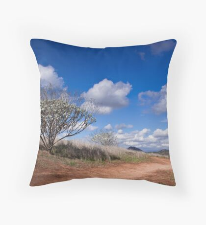 Just keep going. Throw Pillow