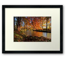 River lazily flows through the woods. Framed Print