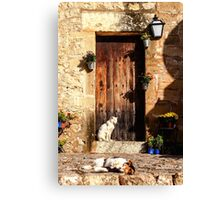 Top Cats Canvas Print