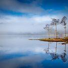 Loch Ard ,Trossachs , Scotland by David Mould