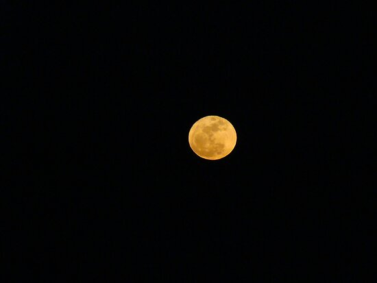 Supermoon (March 19, 2011)  by Poete100