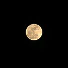 Super Moon by smalletphotos