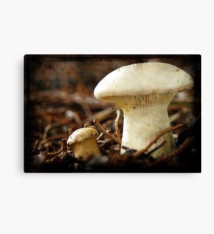Grunged Fungus Canvas Print