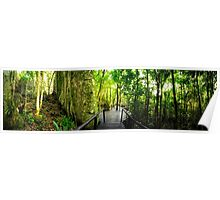High Definition Forest Panorama Poster