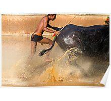 Moodbidri Bufallo Race Poster