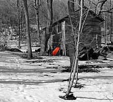 Red Wheelbarrow - Dunrobin by Debbie Pinard