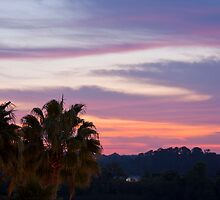 Tropical Morning Sky by daphsam