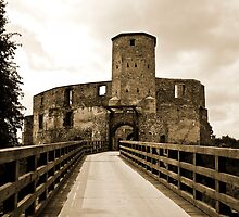 Castle Siewierz Poland by MarekM