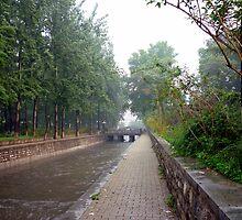 Jinan Rainstorm by Phillip Wayne