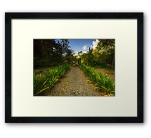 Path to Nature Framed Print