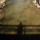 The Photographer's Shadow by Laurel Talabere