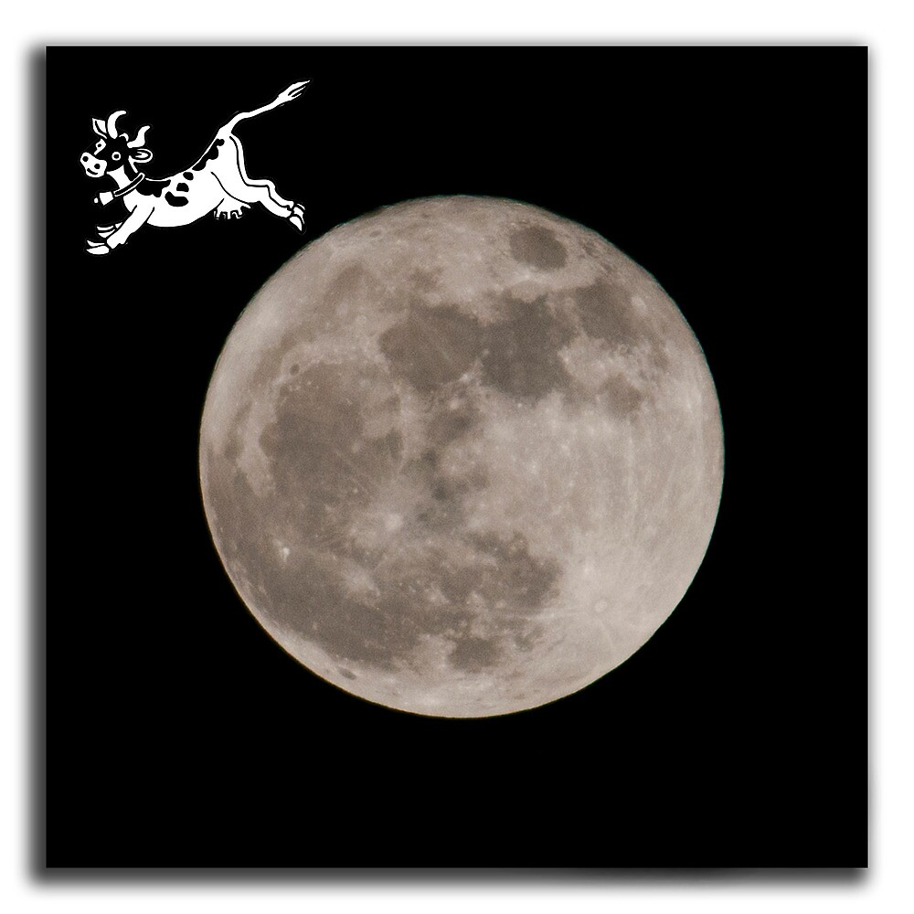 By request...the cow jumped over the moon by Roxane Bay