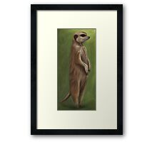 Its a Meerkat Framed Print
