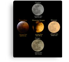 A Moon Full of Flavors and Sizes Canvas Print