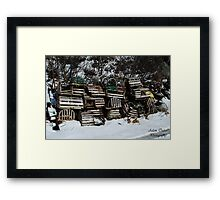 Lobster Cage Framed Print