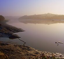 Cornwall: Morning Mist at Halton Quay by Rob Parsons