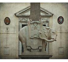 Il Elefantino de Bernini Photographic Print