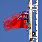 Red Ensign by dmacwill
