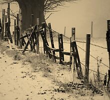 The Fence in the snow by indianpeteee
