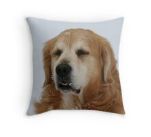 My Teeth Are Chattering Now Mom! Throw Pillow