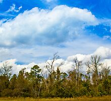 Nothing but blue skies by Athenawp