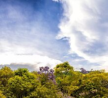 High Definition Panorama by Glauco Meneghelli