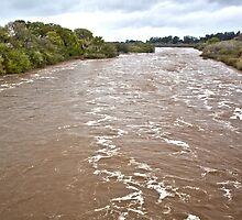 Santa Ynez River and Lompoc by Renee D. Miranda