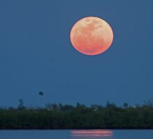 Island moon by Larry  Grayam