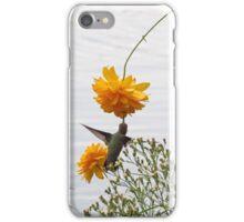 hummingbird 2 iPhone Case/Skin