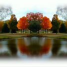 Dreamy Autumn Day!!! ©  by Dawn M. Becker