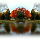 Dreamy Autumn Day!!! ©  by Dawn Becker