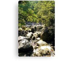 Australia River Rock, Queensland Canvas Print
