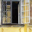 Yellow Window Buda 2 by Danielle  La Valle