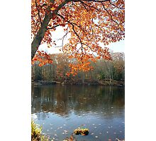 Autumn Foliage in New England Photographic Print