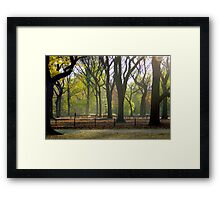 Autumn in Central Park, NYC Framed Print
