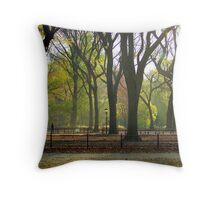 Autumn in Central Park, NYC Throw Pillow