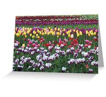 Woodland Tulip Festival Greeting Card