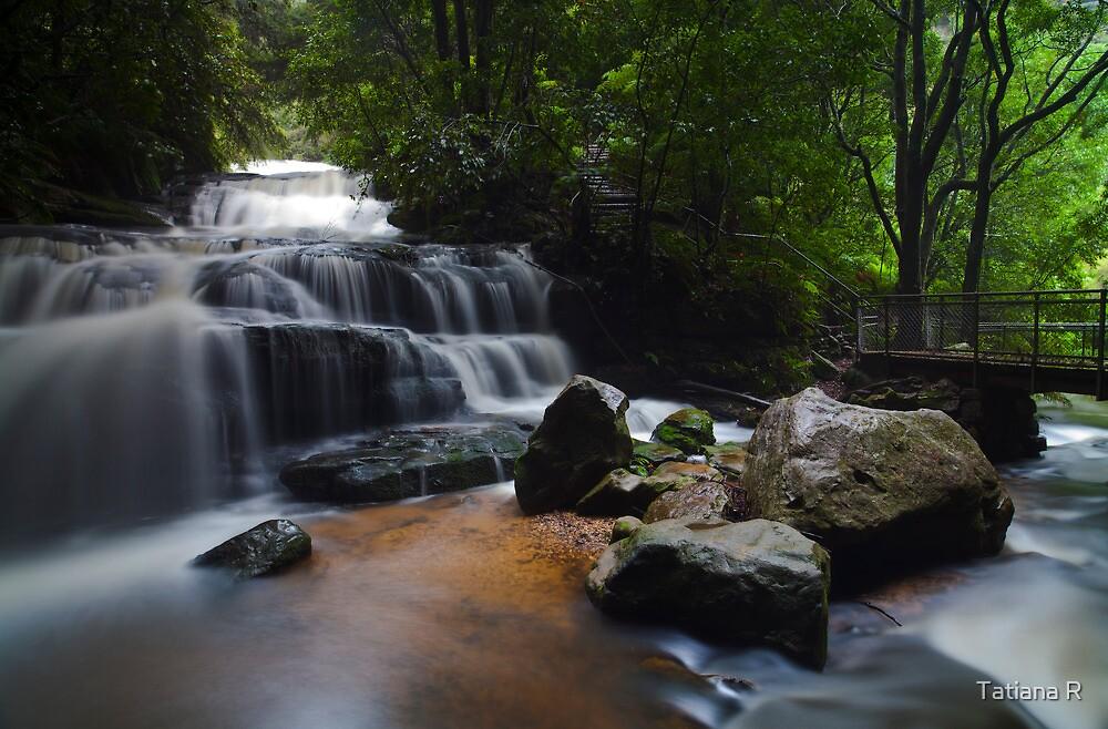 Leura Cascades by Tatiana R