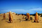 The Pinnacles Desert, Western Australia by Christine Smith