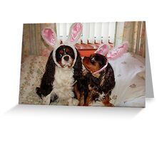 My Easter Bunnies !!! Greeting Card