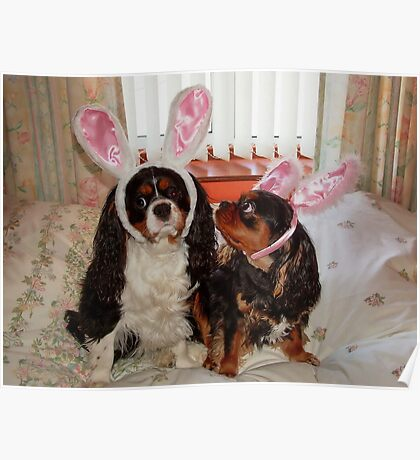 My Easter Bunnies !!! Poster