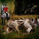 Horse &amp; Hounds by Country  Pursuits