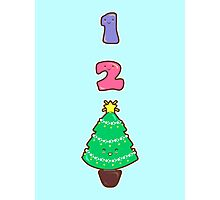 Count to Christmas Photographic Print