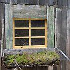 Tales of a Window by Steven Conrad