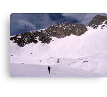 White wilderness Canvas Print