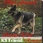 K9 Friend Banner by Stephen Willmer
