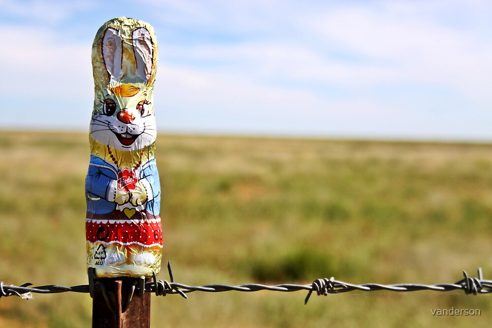 Easter in the Outback by vanderson