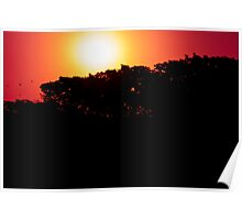 Silhoutte Sunset 2 Poster